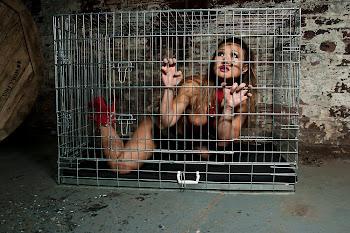 Cage aux Folles