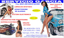Servicio Garcia