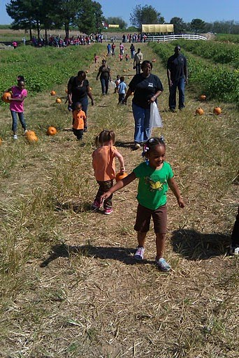 Jefferson county wisconsin pumpkin patches