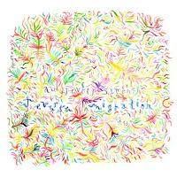 Au Revoir Simone - Reverse Migration album cover