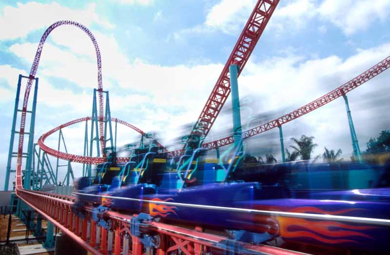 roller coaster accident essay