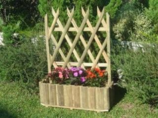 Id ias para campos e jardins bambu for Bambu seco para decoracion