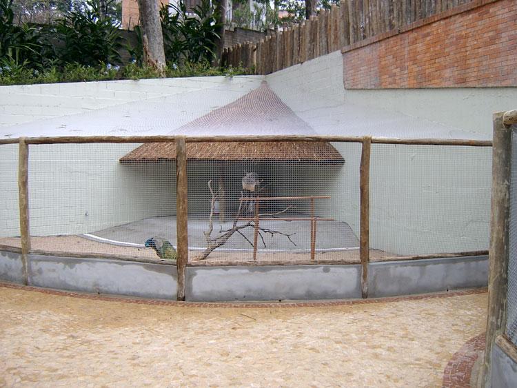 cerca de madeira para jardim em recife : cerca de madeira para jardim em recife:Idéias para campos e jardins: Mini Zoo