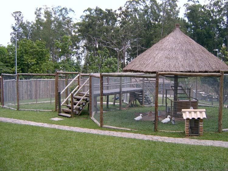 jardins ideias criativas:Idéias para campos e jardins: Mini Zoo