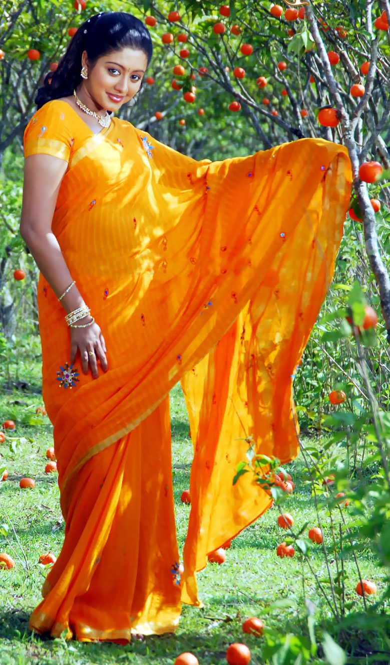 Actress Gopika Saree