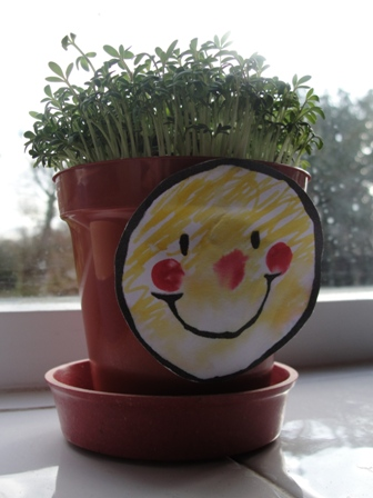 Funny Cress Heads