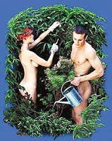 Дачники - Адам и Ева