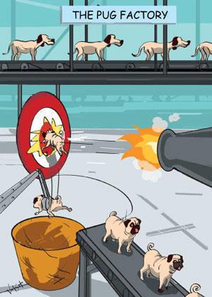 [Image: pug+factory-774936.jpg]