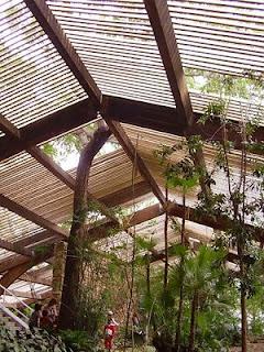 Ecococos umbr culos barcelona y sevilla for Jardin americano sevilla