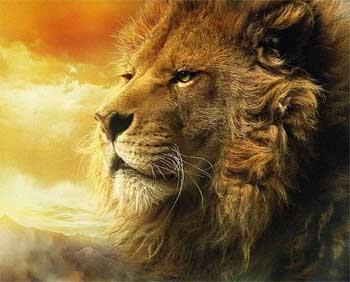 aslan ainda ruge longe e perto