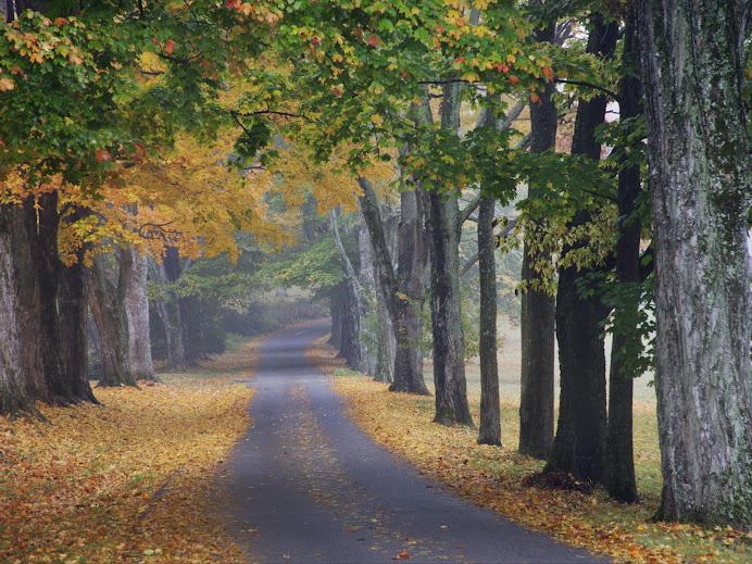 Sempre existe um novo caminho a trilhar