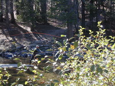 Well off the beathen path fly fishing northern california for Fly fishing northern california