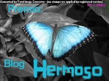 Premio Blog Hermoso