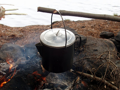 Mungo Says Bah! Camping, hiking, bushcraft, camping, algonquin park, nature, flora, fungus, woodcraft