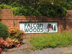 Falcon Woods - Marietta Community