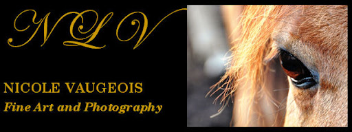 Nicole Vaugeois Fine Art and Photography