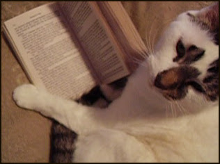 Not now, I'm reading!