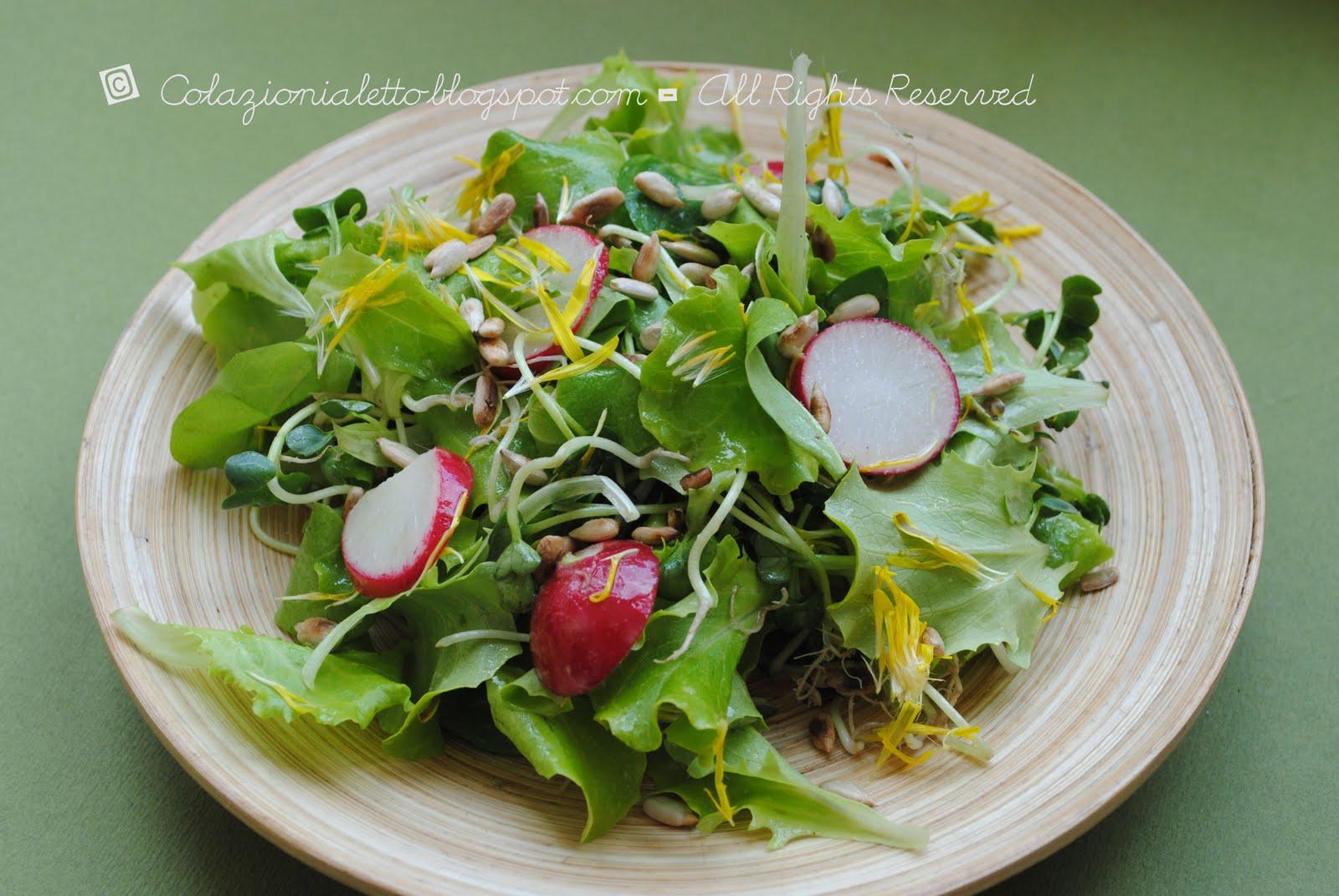 Spring salad con fiori di tarassaco e semi di girasole for Semi di fiori