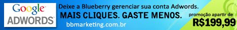 Google Adwords - Blueberry