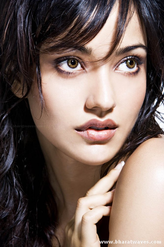 Celebrities Models Actress wallpapers: Neha Sharma