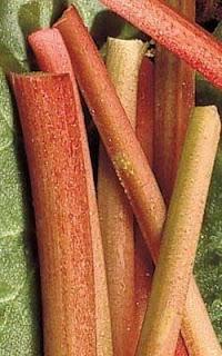 Recettes Légumes anciens-Compote de rhubarbe au pomelo