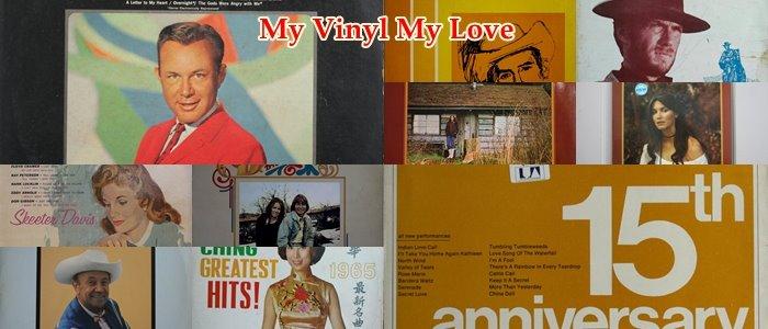 My Vinyl My Love