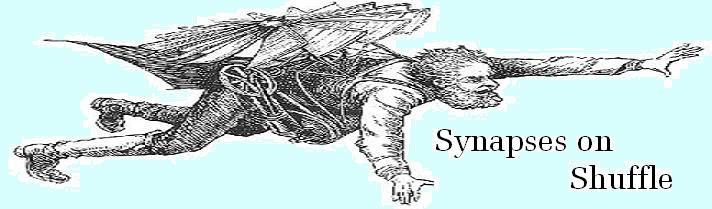 Synapses on Shuffle