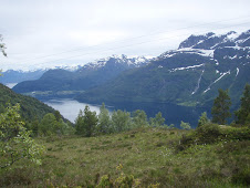 Utsyn frå Veten, inn Nordfjorden