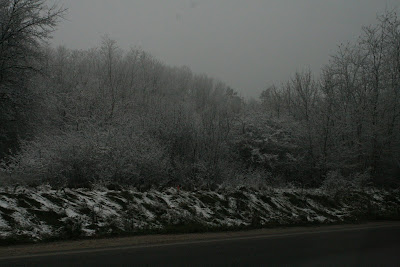 pilisvorosvar-daily-photo-black-white