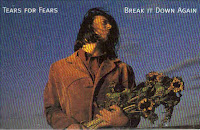 "Top 100 Songs 1993 ""Break It Down Again"" Tears For Fears"
