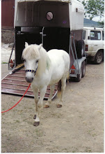 Our first pony Sparky