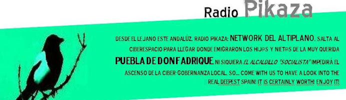 Radio Pikaza Online