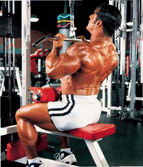 Back Advanced Routine Mike Dragna Bodybuilding