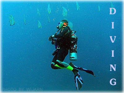 ดำน้ำ , Diving