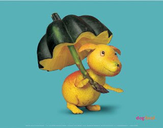 dog with pumpkin umbrella