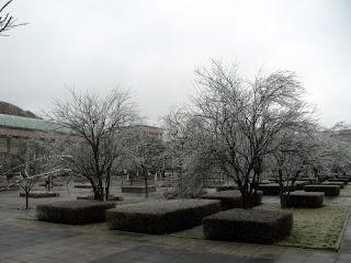 garden of ice