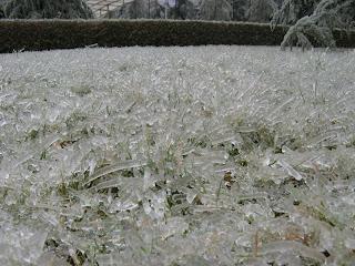 garden of ice shard