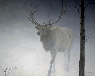 Elk Aspen