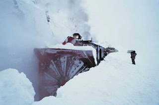 travel with snow train is unforgeable memories