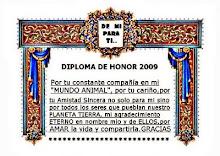 Diploma de honor 2009