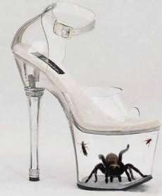 Most Dangerous Shoe in the World: Tarantula Shoe