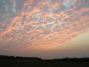 Moshav sunset (November 2007)