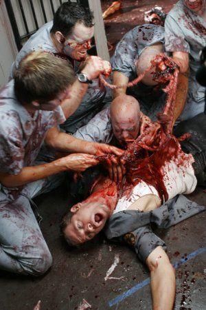Zombies y Osos nos invaden