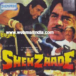 Shehzaade 1989 Hindi Movie Download