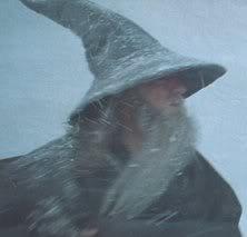Blizzard Wizard