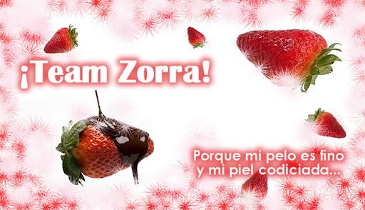 Team Zorra