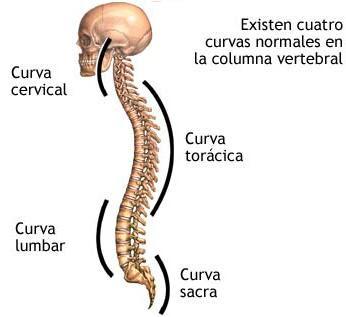 La raíz okopnika a la hernia intervertebral
