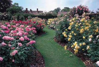 El diván del loko: El Jardín de Rosas