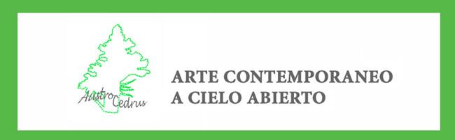austrocedrus arte contemporaneo