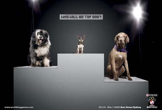 Funny Animal Ads
